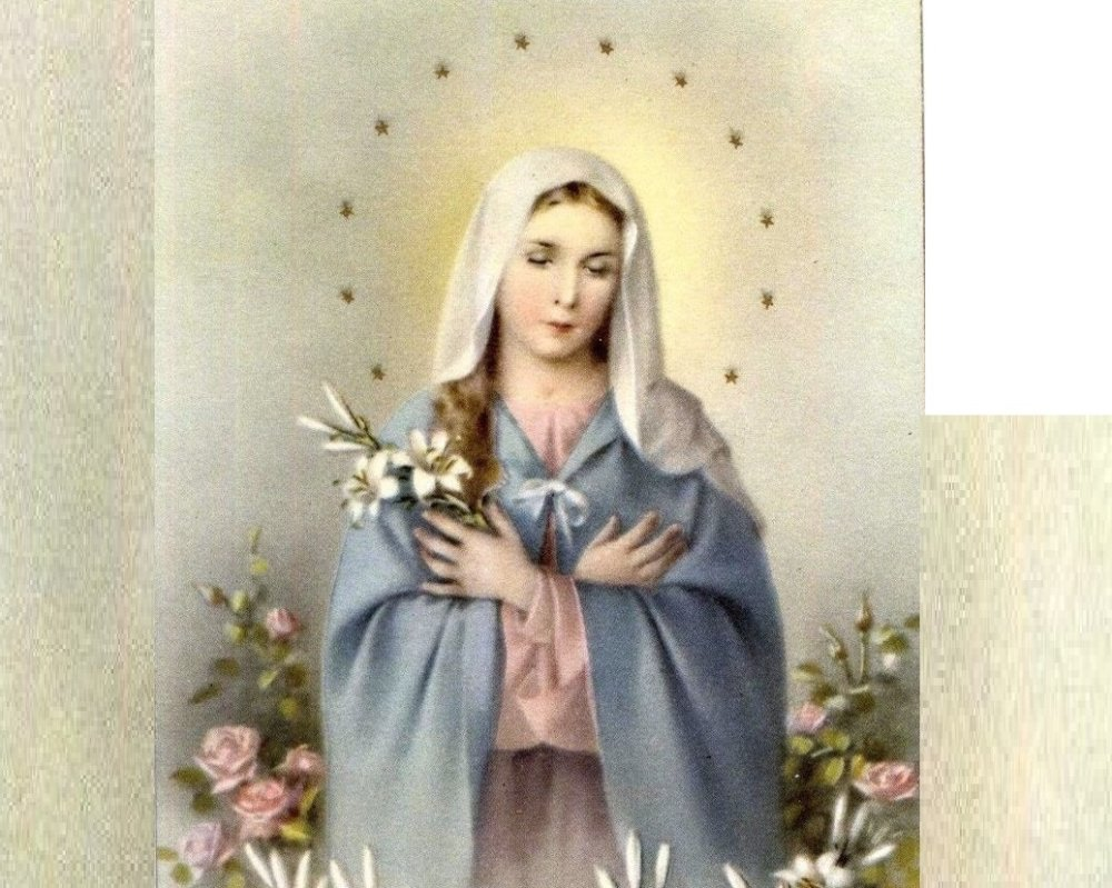 هكذا قال الآباء عن العذراء مريم وطنى