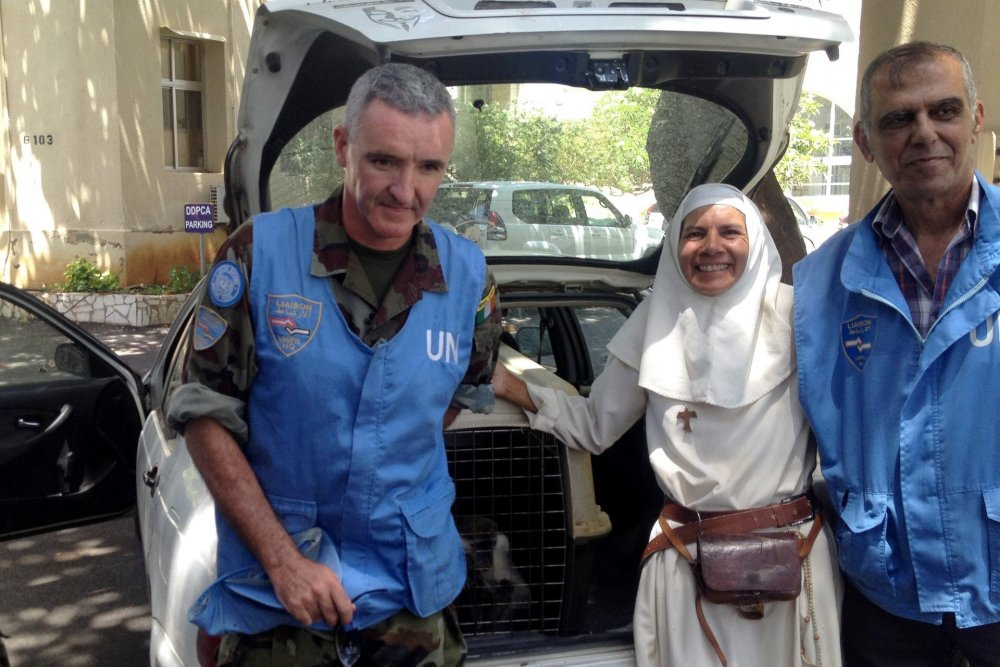 """القرد """"طشطوش"""" يهرب من لبنان .. لـ """"إسرائيل """" والأمم المتحدة والناطق باسم الجيش الإسرائيلي يتدخلان"""