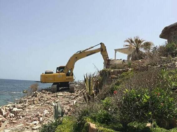 برلماني يتقدم ببيان عاجل  للحكومة بشأن قطع الأشجار النادرة بحدائق المنتزة