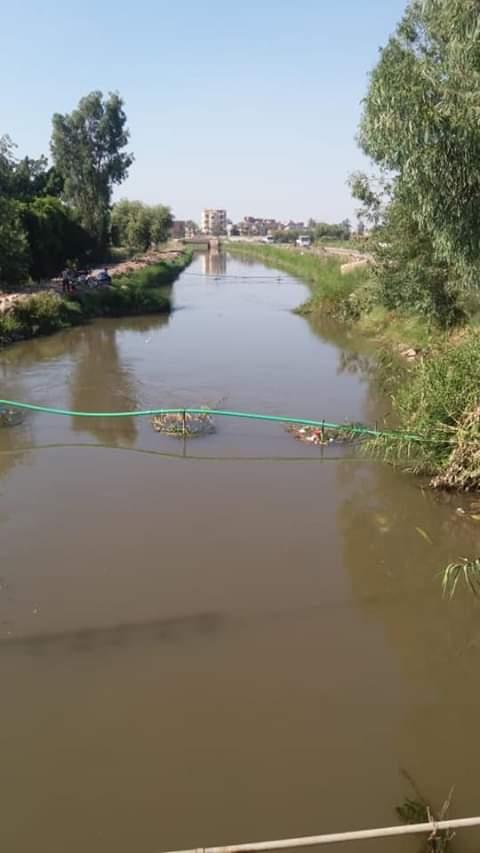 مهندسو الري يتفقدون حالة المجاري المائية والزراعات الصيفية بالشرقية