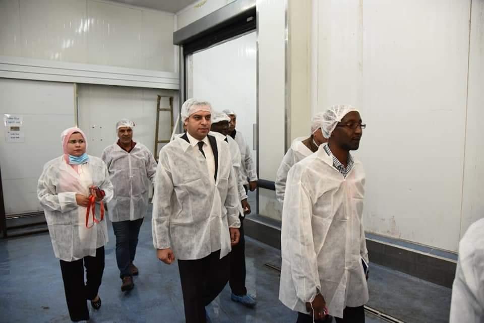 بعثة الآلية الإفريقية تزور عدد من المناطق بمحافظة بورسعيد