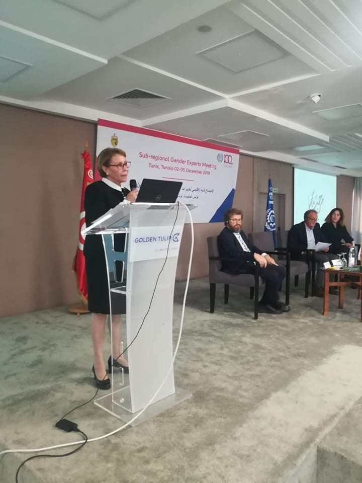 مصر تشارك في الاجتماع شبه الإقليمي لخبيرات وخبراء المساواة بين الجنسين بتونس